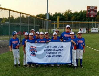 Clarion 10u All-Star Team Captures District 25 Banner (07/12/2018)