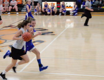 Lady Cats Junior High Basketball Completes Successful Season (11/29/19)