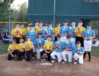 Clarion Little League Baseball And Softball 2021 Registration Available On-line
